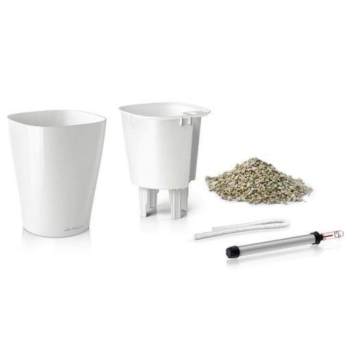 deltini | Φυτώρια/Γεωπονικές Επιχειρήσεις Χορομίδης: γλάστρες, φυτά, καρποφόρα, αειθαλή, φυτοχώματα, λιπάσματα, εργαλεία και είδη κήπου | Horomidis Agronomic Corp. Flower pots, plants, garden utensils and supplies, evergreens, fruit trees, fertilizer, soil