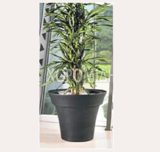 MISCIA VASO| Φυτώρια/Γεωπονικές Επιχειρήσεις Χορομίδης: γλάστρες, φυτά, καρποφόρα, αειθαλή, φυτοχώματα, λιπάσματα, εργαλεία και είδη κήπου | Horomidis Agronomic Corp. Flower pots, plants, garden utensils and supplies, evergreens, fruit trees, fertilizer, soil