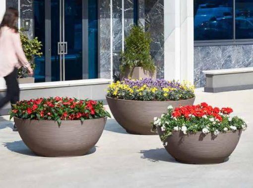ARENA | Φυτώρια/Γεωπονικές Επιχειρήσεις Χορομίδης: γλάστρες, φυτά, καρποφόρα, αειθαλή, φυτοχώματα, λιπάσματα, εργαλεία και είδη κήπου | Horomidis Agronomic Corp. Flower pots, plants, garden utensils and supplies, evergreens, fruit trees, fertilizer, soil