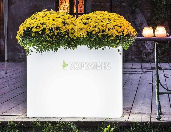 Φυτώρια/Γεωπονικές Επιχειρήσεις Χορομίδης: γλάστρες, φυτά, καρποφόρα, αειθαλή, φυτοχώματα, λιπάσματα, εργαλεία και είδη κήπου | Horomidis Agronomic Corp. Flower pots, plants, garden utensils and supplies, evergreens, fruit trees, fertilizer, soil